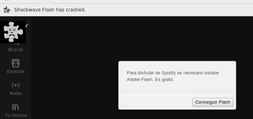 Shockwave Flash has crashed