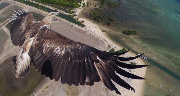 Photo of Dronestagram: las mejores imágenes y videos capturados desde drones