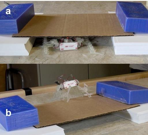 robot impreso en 3D movimientos